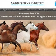 GCM France coaching et Uppplacement