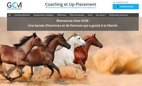 GCM France coaching et Uppplacement