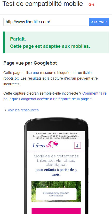 site 100% mobile wordpress libertille